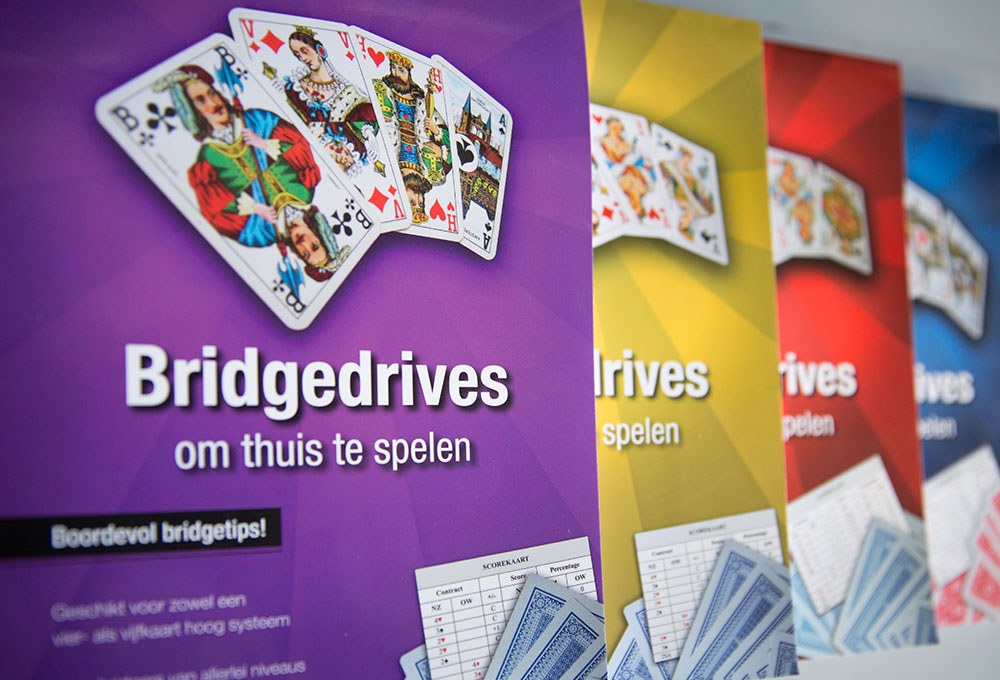 bridgedrives2
